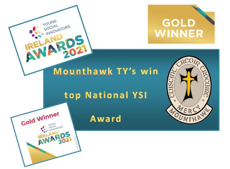 TY YSI Gold Award Winners