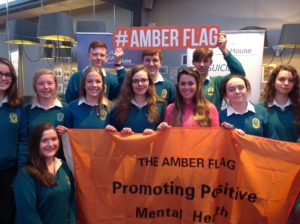 Ms. Emma Nolan with Senior Social Innovator Pupils receiving the Amber Flag